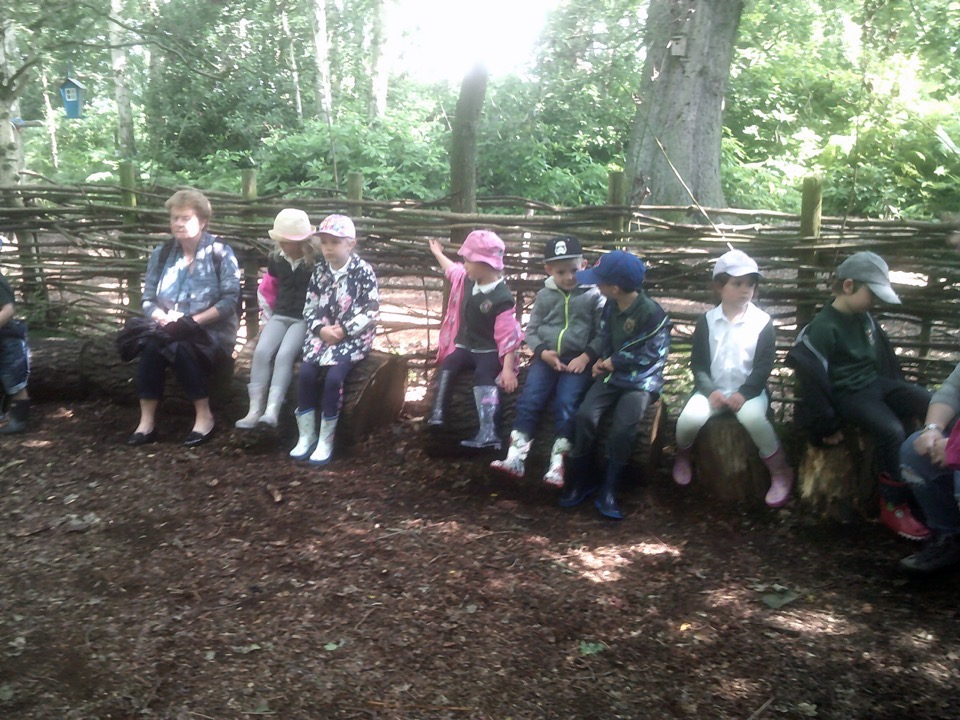 Early Years visit to Packington Farm - July 2019