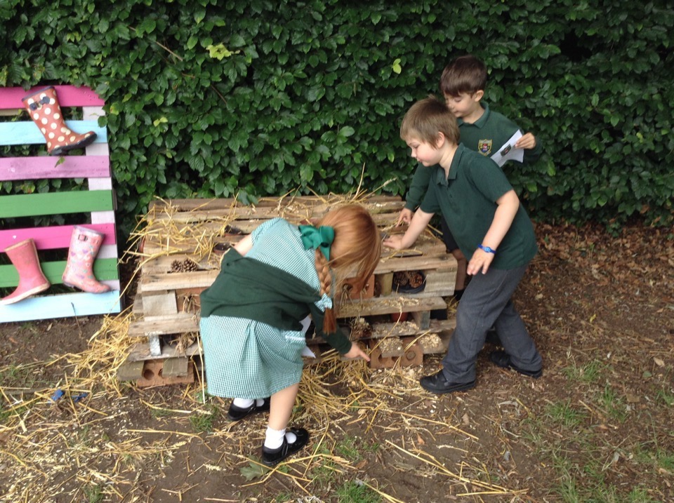 Early Years' Maths Hunt – 10th July 2019