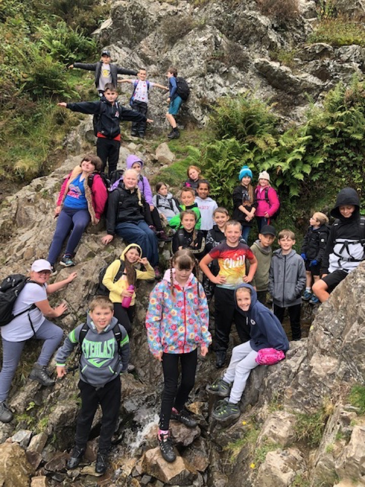 Laches Wood 2019 – more photos from the Hike day!