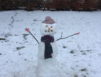 Snowman 26th January 2021